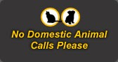 No domestic animal calls